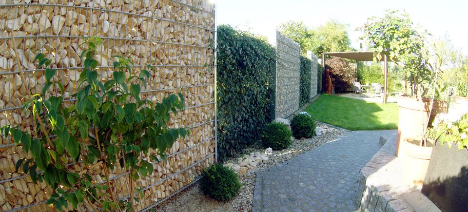 neueste immergr ne pflanzen als sichtschutz konzept terrasse design ideen. Black Bedroom Furniture Sets. Home Design Ideas